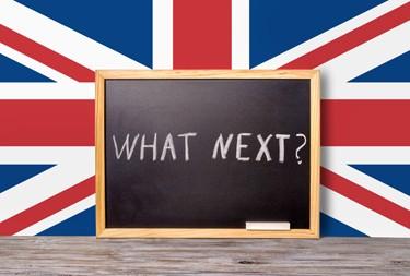 'Brexit means Brexit' means what?