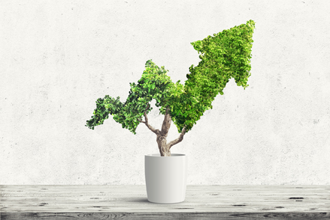 5 tips for green investing